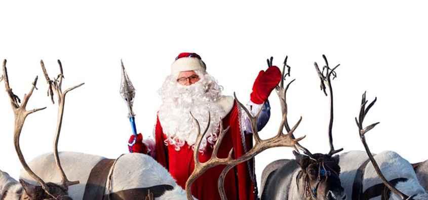 Renne Di Babbo Natale Nomi.Le Renne Di Babbo Natale Nomi Storia E Caratteristiche Delle Renne Di Natale
