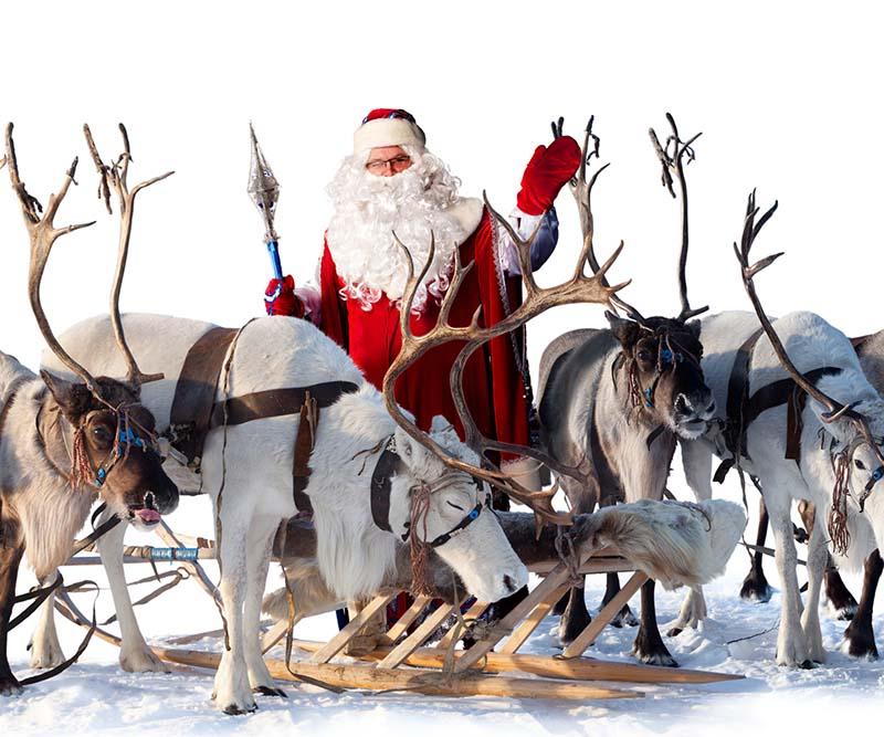 Posizione Babbo Natale.Le Renne Di Babbo Natale Nomi Storia E Caratteristiche Delle