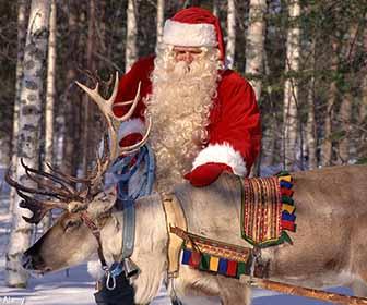 Renne Babbo Natale.Le Renne Di Babbo Natale Nomi Storia E Caratteristiche Delle